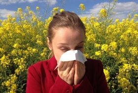 manifestarea alergiilor